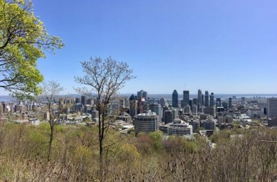 View of Montréal skyline from Mont Royal